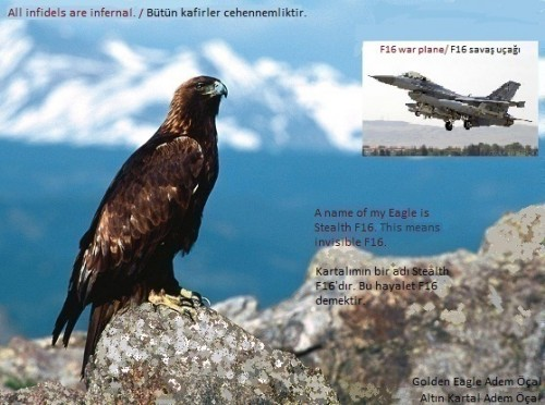 Stealth-F16-Adem-Ocal.jpg
