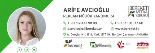 Arife-Avcioglu.png