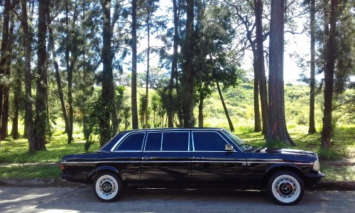 Public-park-Mercedes-300d-Lang-Limousine.-Rohrmoser-Costa-Rica.jpg