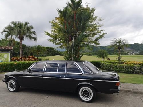 IGUANA-GOLF-LOS-SUENOS-COSTA-RICA-W123-MERCEDES-LANG.jpg