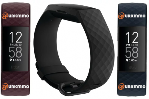 fitbit4.png