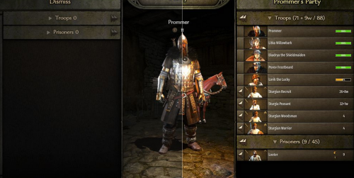 Bannerlord-FXShade4.png