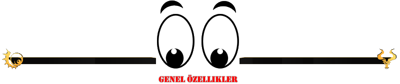 GENel.png