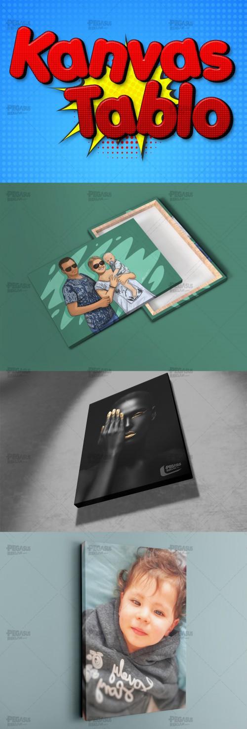 Pegasus-Reklam-Kanvas-Tablo.jpg