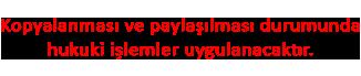 Turkmmo-Telif-Hakki.png