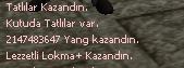Yang.png